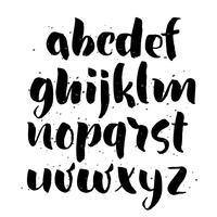 borsta stil handritat alfabet vektor