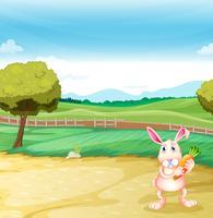 En kanin som håller en morot vektor