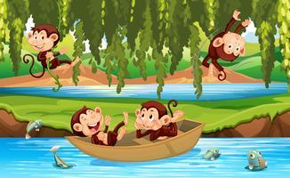 Affe in freier Wildbahn vektor