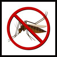 Tecken på ingen mygga vektor