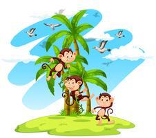 Tre apor på ön vektor