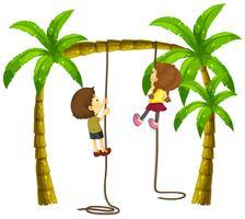 Kinder, die Seil auf dem Baum klettern