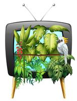 Macawvogel im Dschungel vektor