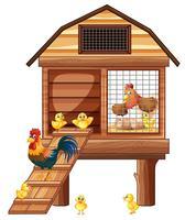 Kyckling coop med många kycklingar vektor