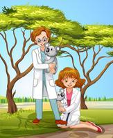 Tierarzt und Coala im Wald vektor