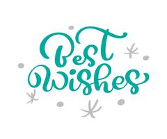 Beste Wünsche-Weihnachtsweinlesekalligraphie-Beschriftungs-Vektortext mit skandinavischem Flourishdekor des Winters Zeichnung. Für Kunstdesign, Mockup-Broschürenstil, Bannerideenabdeckung, Broschürendruck-Flyer, Poster vektor