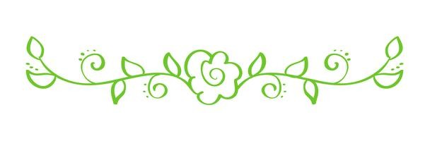 Grüner Vektor-Hand gezeichneter kalligraphischer Separator. Frühling Flourish Design Element. Floraler heller Stildekor für Grußkarten, Web, Hochzeit und Druck. Isoliert auf weißem Hintergrund Kalligraphie und Beschriftung Abbildung vektor