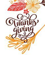 Thanksgiving Calligraphy Text med blommor och löv, vektor Illustrerad typografi Isolerad på vit bakgrund för hälsningskort. Positivt citat. Handdragen modern borste. T-shirt tryck