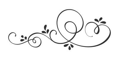 Vektor-Hand gezeichnete kalligraphische Frühlings-Flourish-Gestaltungselemente. Floraler heller Stildekor für Web, Hochzeit und Druck. Isoliert auf weißem Hintergrund Kalligraphie und Beschriftung Abbildung vektor