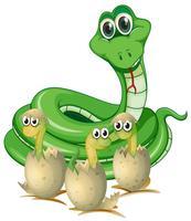 Schlangen- und Babyschlangen in Muscheln vektor