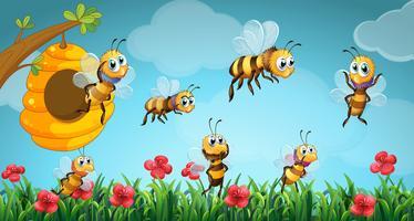 Bees som flyger ur bikupan i trädgården