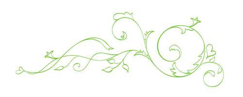 Grön Vector Hand Drawn Kalligrafisk Separator. Spring Flourish Design Element. Blomstrande ljusstil inredning för gratulationskort, webb, bröllop och tryck. Isolerad på vit bakgrund Kalligrafi och bokstäver illustration