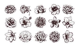 Set av grungy blommor vektor