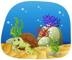 Havssköldpadda som simmar under havet vektor