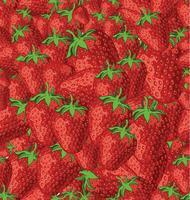 Sömlös bakgrund av jordgubbar vektor