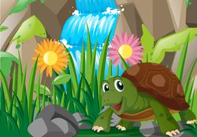 Sköldpadda vid vattenfallet vektor