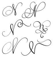 uppsättning konst kalligrafi brev N med blomning av vintage dekorativa whorls. Vektor illustration EPS10