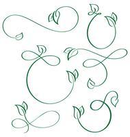 kalligraphische Elemente des Designers grüne Blattikonen vegan eingestellt auf weißen Hintergrund