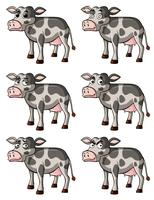 Kuh mit verschiedenen Gesichtsausdrücken vektor