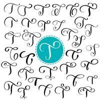 Sätta bokstaven T. Handdragen vektor blomstra kalligrafi. Skript typsnitt. Isolerade bokstäver skrivna med bläck. Handskriven penselstil. Handbokstäver för logotypemballage
