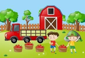 Gårdsplats med två pojkar med äpplen i korgen