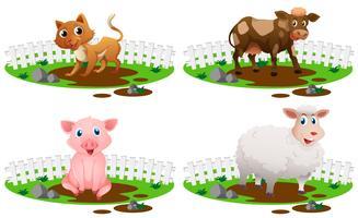 Vier Arten von Tieren im Schlamm