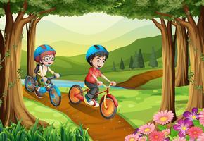 Två pojkar cyklar i parken