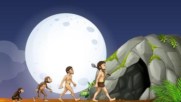 Affen und menschliche Entwicklung vektor