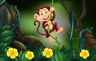 Affe auf der Rebe im Wald vektor