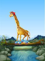 Giraff spelar rullskridskoåkning i naturen
