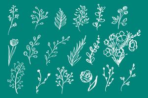 Hand Drawn vintage blommiga element blommor lämnar grenar dekorativa växter för design bakgrund inbjudningar hälsningskort logos flayers scrapbooking etc, vektor illustration
