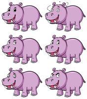 Hippo in sechs verschiedenen Emotionen