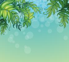 En blå bakgrund med gröna bladiga växter