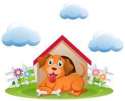 Söt hund på hundhuset i trädgården
