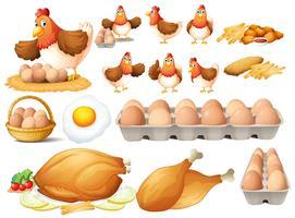 Hühnchen und verschiedene Arten von Hühnerprodukten vektor