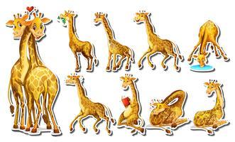 Aufkleber eingestellt mit glücklicher Giraffe vektor
