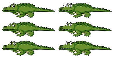 Krokodil med olika känslor
