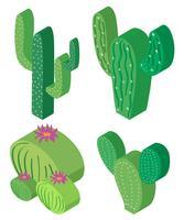 3D-design för kaktusplantor vektor
