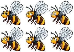 Biene mit verschiedenen Gesichtsausdrücken vektor
