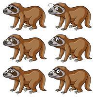 Sloth med olika känslor