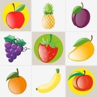 Olika typer av frukter vektor
