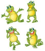Frosch-Serie vektor