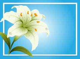 Grenzschablone mit weißer Lilie