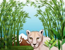En läskig tiger på bambuskogen