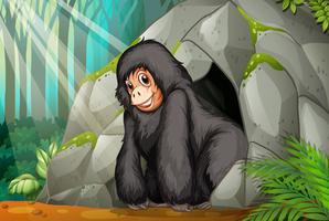 Chimpansan står framför grottan