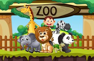 Wilde Tiere im Zoo vektor