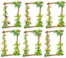 Plantmallar vektor
