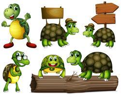 Schildkröten mit leeren Schildern vektor