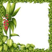 En grön ram med en blomma