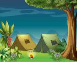 Zelte im Dschungel vektor